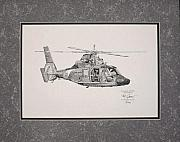 Uscg Drawings - United States Coast Guard HH-65C  by Kevin Jacot