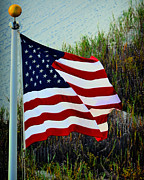 Flag Pole Posters - United States of America Poster by Gerlinde Keating - Keating Associates Inc