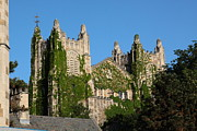 University Of Michigan Art - University of Michigan Law School  by Jim Vansant