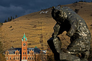 Missoula Framed Prints - University of Montana Icons Framed Print by Katie LaSalle-Lowery