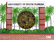 College Drawings Framed Prints - University of South Florida Framed Print by Frederic Kohli