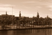 Campus Landscape Framed Prints - University of Tampa with River - Sepia Framed Print by Carol Groenen