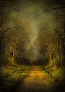 Park Scene Mixed Media Metal Prints - Unknown Footpath Metal Print by Svetlana Sewell