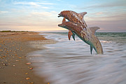 Dolphins Digital Art Metal Prints - Unknown Thought Metal Print by Betsy A Cutler East Coast Barrier Islands