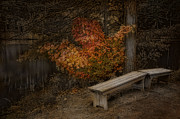 Benches Photos - Until Dawn by Robin-lee Vieira