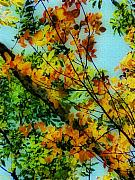 Yellow Leaves Metal Prints - Untitled 15 Metal Print by Jeff Breiman