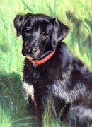 Dogs Pastels Prints - Untitled Print by Kathleen Kelly Thompson