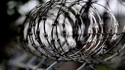 Barbed Wire Fences Framed Prints - Unwanted Framed Print by Travis Truelove