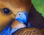 Birds Of Prey Paintings - Up Close and Personal by Brian  Commerford