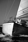 Sailing Metal Prints - Up Close  Metal Print by David Shuler