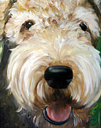 Puppies Art - Up Close  by Mary Sparrow Smith