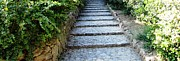 Parc Guell Prints - Up Hill Stairs in Parc Guell Barcelona Spain Print by John A Shiron