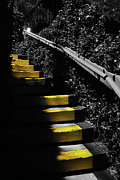 Stairs Art - Up To Something by Amanda Vouglas