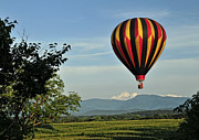 Hot Air Balloon Photos - Up Up And Away Blueridge 2 by Lara Ellis