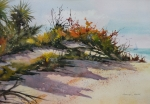 Sand Dunes Paintings - Upper Captiva Beach by Marion Hall
