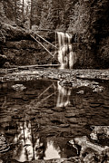 Tun Prints - Upper North Silver Falls Sepia Print by Darcy Michaelchuk
