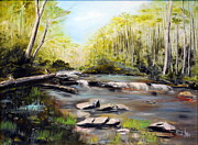 Trout Stream Landscape Framed Prints - Upstate South Carolina Trout Stream Framed Print by Phil Burton