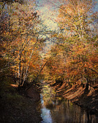 Autumn Landscape Framed Prints - Upstream Framed Print by Jai Johnson