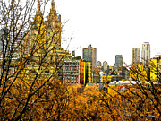 Central Park Digital Art Prints - Urban Autumn in NYC Print by Linda  Parker
