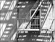 Escape Photo Originals - Urban Fire Escape by Rhea Malinofsky