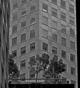 Urban Living In San Francisco - A Garden In The City Print by Mark Hendrickson