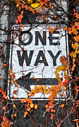 One Way Prints - Urban Seattle Sign - Fall Print by Gary Whitton