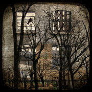 Ttv Posters - Urban window photomontage Poster by Gothicolors With Crows