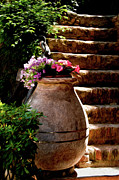 Portofino Italy Art Prints - Urn And Flowers Portofino Italy Print by Xavier Cardell