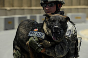 Police Dog Posters - U.s. Air Force Soldier Giving Poster by Stocktrek Images