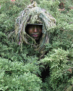 Ghillie Suits Prints - U.s. Army Soldier Demonstrates The Use Print by Stocktrek Images