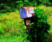 Mail Box Photo Metal Prints - U.S. Mail 2 Metal Print by Perry Webster