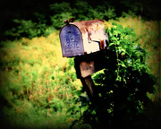 Mail Box Photo Metal Prints - U.S. Mail Metal Print by Perry Webster