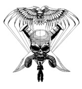 Human Skull Drawings - US Marine Corp Recon by Scarlett Royal