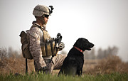 Working Dogs Prints - U.s. Marine Holds Security In A Field Print by Stocktrek Images