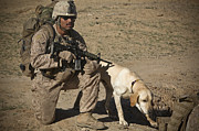 Watch Dog Photo Framed Prints - U.s. Marine Provides Security Framed Print by Stocktrek Images