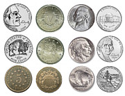 5 Cents Prints - US Nickels Print by Paul Ward