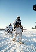 Combat Gear Prints - Us Soldiers In Arctic Warfare Training Print by Everett