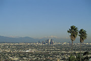 Usa, California, Los Angeles, Skyline With Palm Trees In Fore Print by Mark Scott