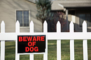 Beware Posters - Usa, Illinois, Metamora, Beware Of Dog Sign On Fence Poster by Vstock LLC