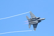 Wings Domain Prints - USAF F-15 Strike Eagle . 7D7864 Print by Wingsdomain Art and Photography