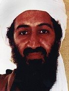Bin Prints - Usama Bin Laden Also Spelled, Osama Bin Print by Everett