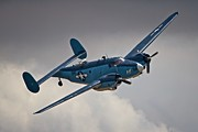 Lockheed Hudson Framed Prints - USN Lockheed Hudson Chino 2011 Framed Print by Gus McCrea