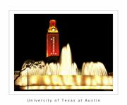 Championship Prints - UT Tower Poster Print by Marilyn Hunt