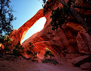 Double O Arch Posters - Utah - Double O Arch Poster by Terry Elniski