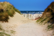 Susie Weaver Art - Utah Beach Normandy France by Susie Weaver