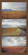 Rural Landscapes Mixed Media Prints - Utah Farmland Triptych Print by Steve Ohlsen
