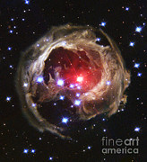 V838 Monocerotis Prints - V838 Monocerotis Print by Nasa