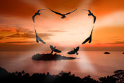 Sunset Digital Art Originals - Valentine bird by Anek Suwannaphoom