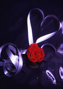Ribbon Prints - Valentine Ribbon and Rose Print by Jerry Taliaferro