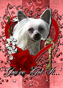Hairless Digital Art Posters - Valentines - Key to My Heart Chinese Crested Poster by Renae Frankz